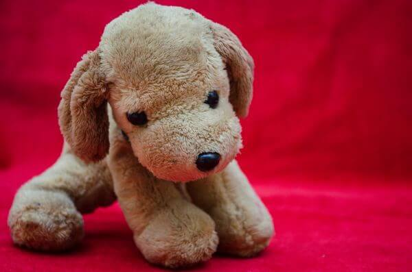 Soft Toys Dog Puppy photo