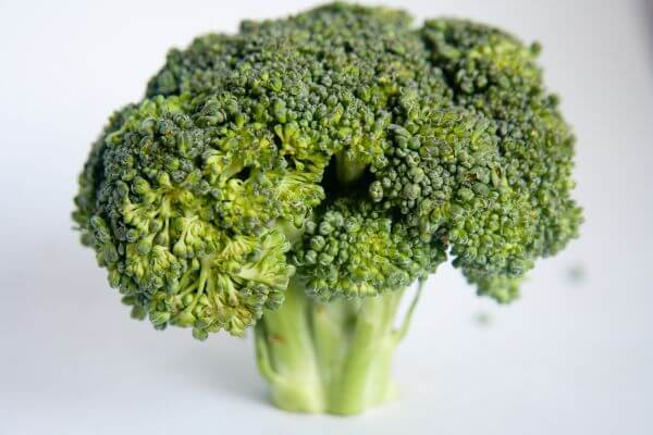 Broccoli Single photo