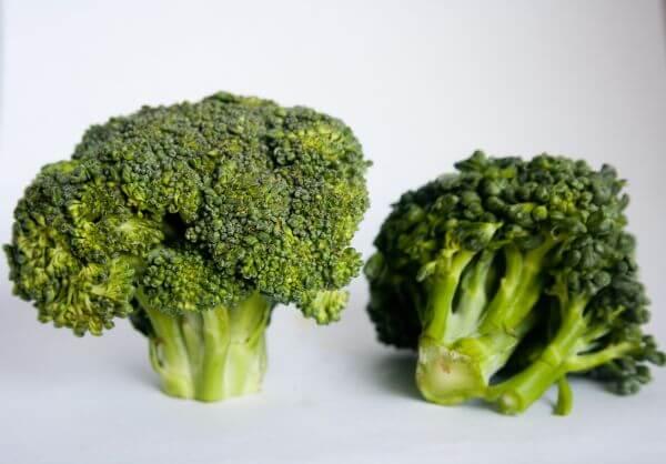 Broccoli Vegetable photo