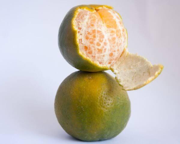 Citrus Fruits Orange photo