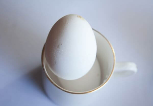 Egg In Cup photo