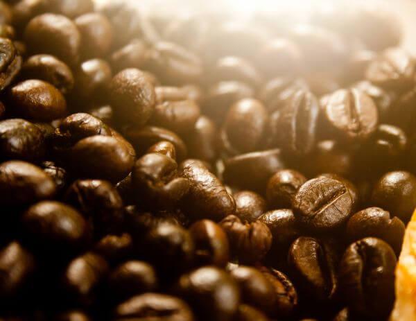 Coffee Beans Closeup photo