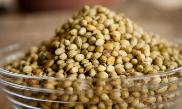 Coriander Seeds Bowl photo