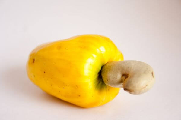 Cashew Fruit photo