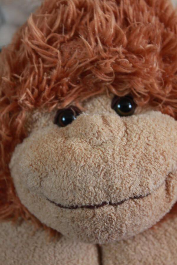 Monkey Soft Toy photo