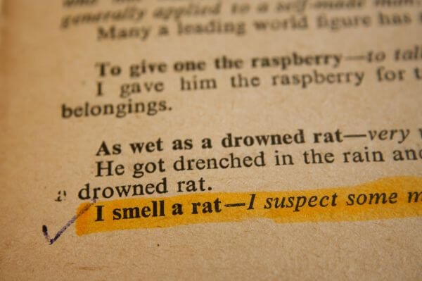 Smell A Rat Phrase photo