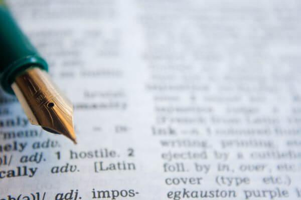 Fountain Pen Dictionary photo