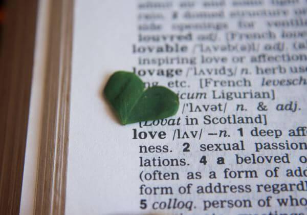 Love Heart Dictionary photo