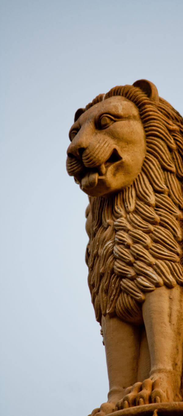 Lion Emblem Statue photo