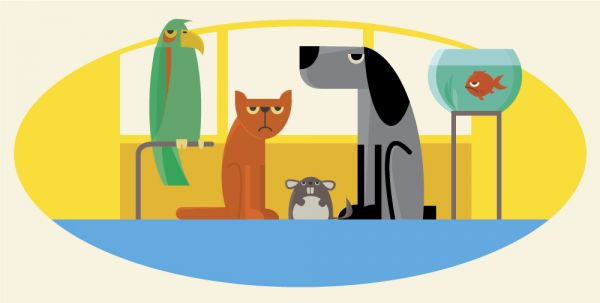 Characters farm pets vector illustration for design vector