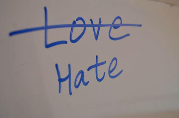 Love Or Hate photo