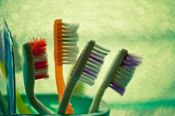 Toothbrushes In Stand photo