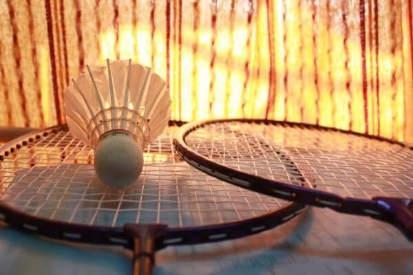 Shuttle Cock Badminton photo