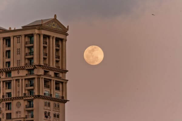 Big Moon Building photo