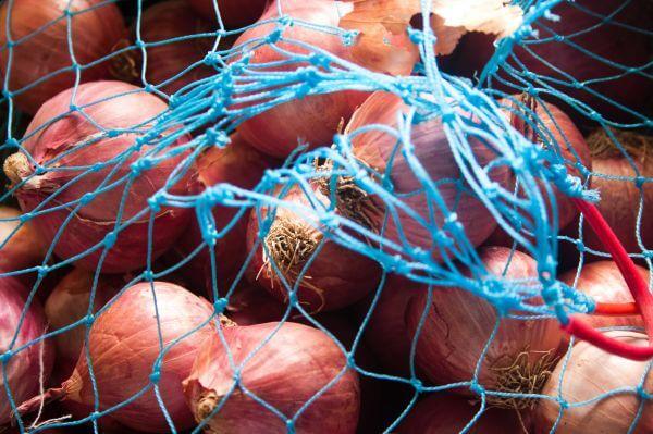 Onion Net photo
