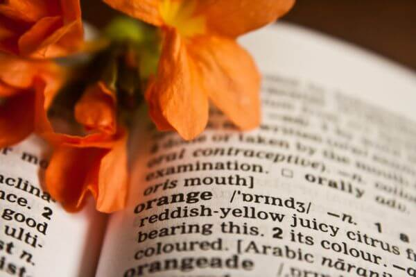 Orange Word Dictionary photo