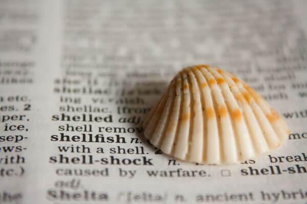 Shell Dictionary photo
