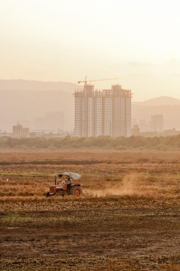 Farmer Fields photo
