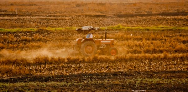 Farming Tractor Farm photo