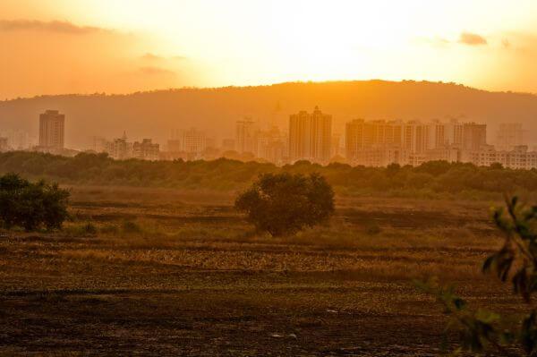 Sunrise City photo