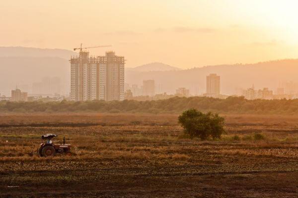 Tractor Fields photo
