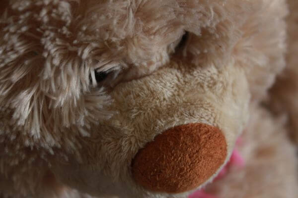 Teddy Bear Soft Toy photo