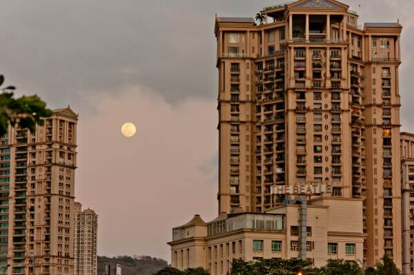 Concrete Jungle Moon photo