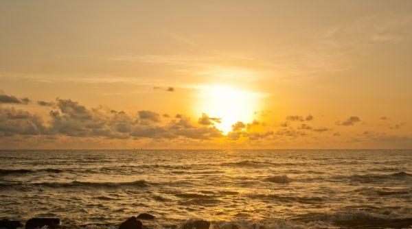 Sea Sun photo