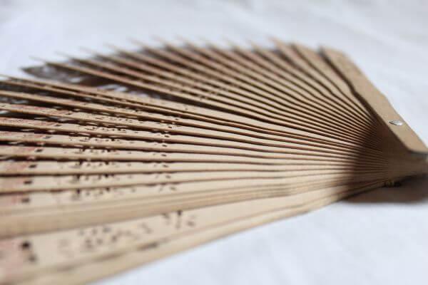Chinese Hand Fan Angle photo