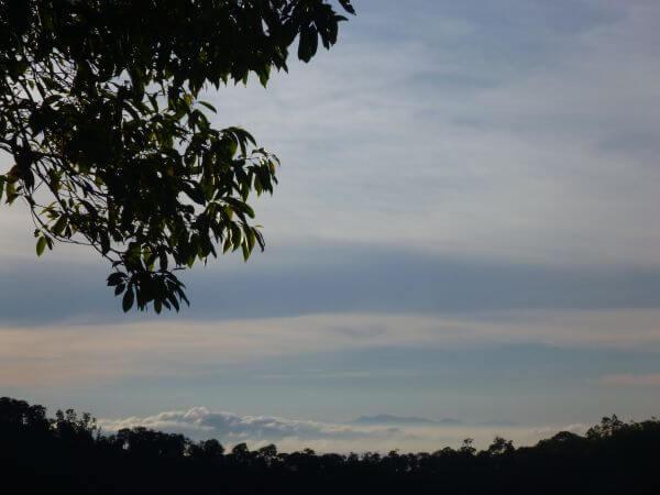 Hilly View Mountains Munnar Kerala photo