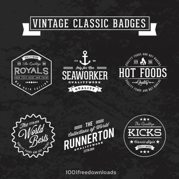 Vintage retro classic badges vector