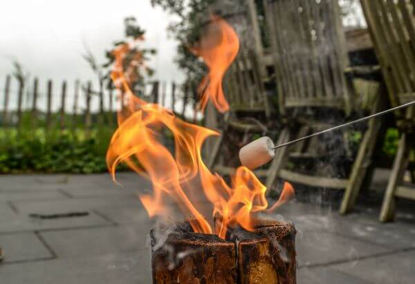 Roasting marshmallows photo