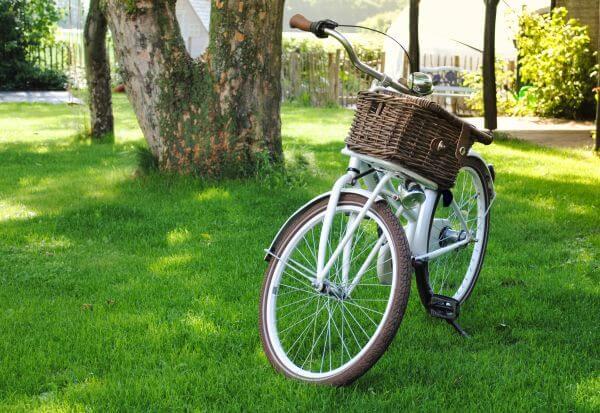 Transport bike for kids photo