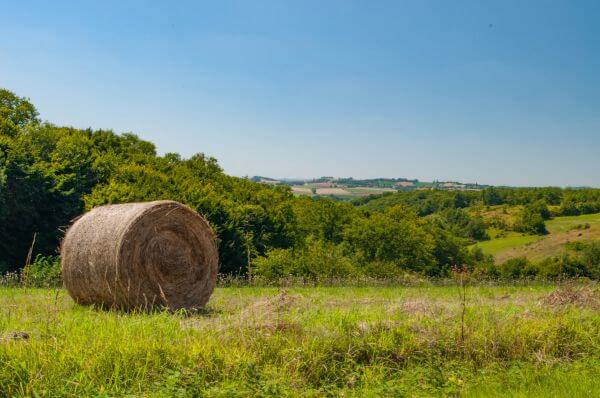 Hay rolls in France photo