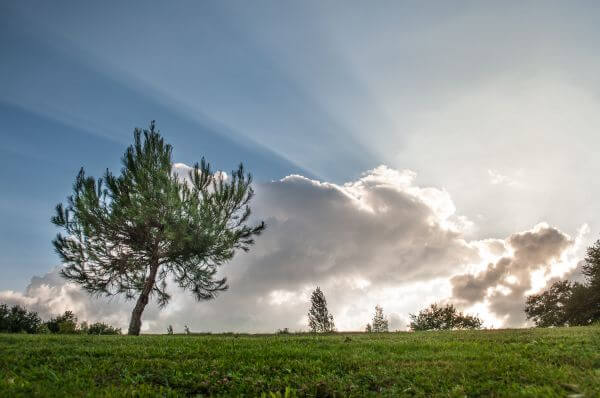 Clouds and sunrays photo