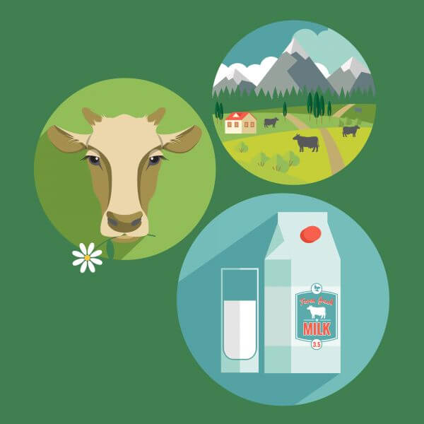 Vector flat design illustration of milk. Design elements vector