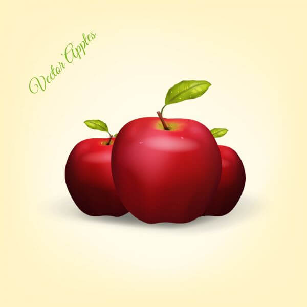 Realistic Vector Apples vector