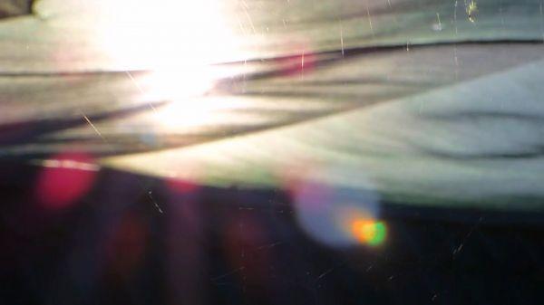 Cobwebs in the sun  spider web  sun video