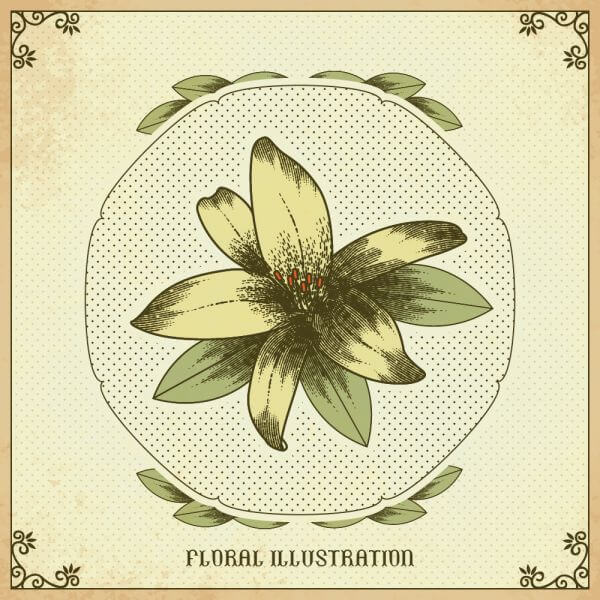 Vintage illustration with vintage flower vector