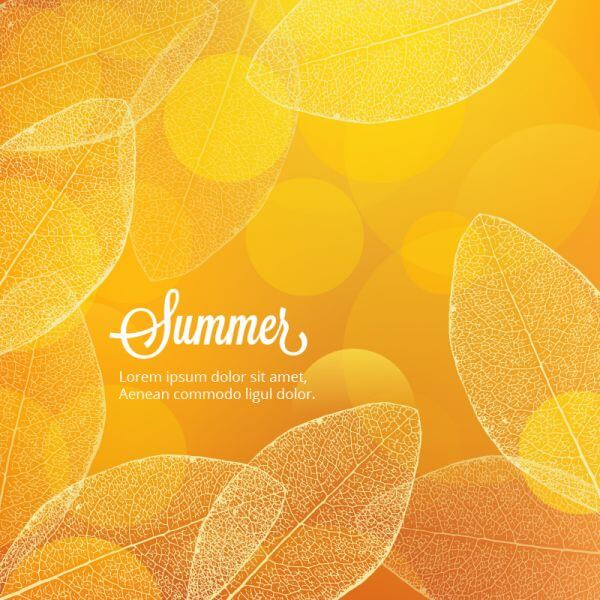 Summer illustration with leaves vector