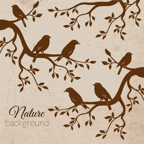 Vintage bird illustration vector