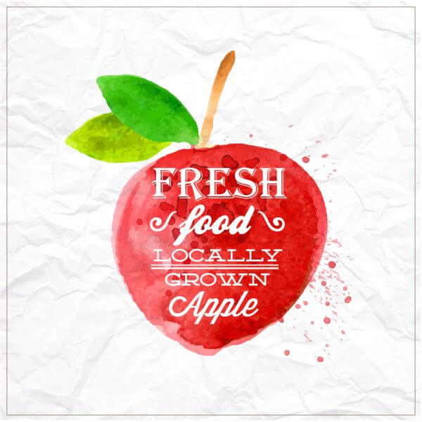 Watercolor apple with typography vector