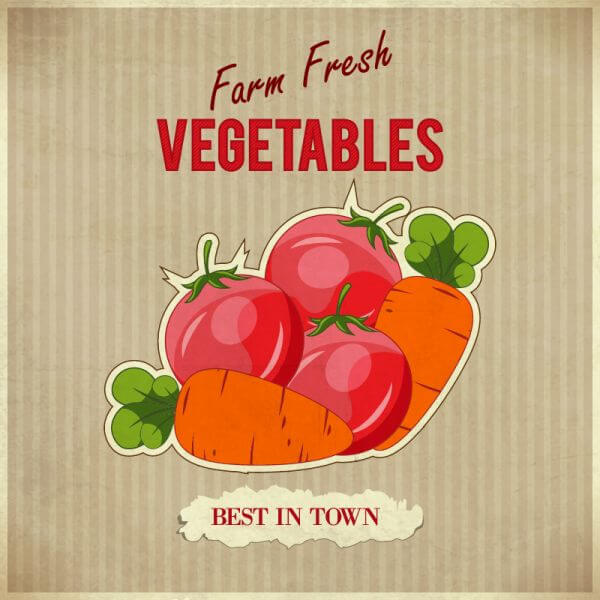 Vegetables retro illustration vector