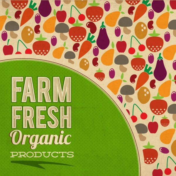 Fruits and vegetables illustration vector