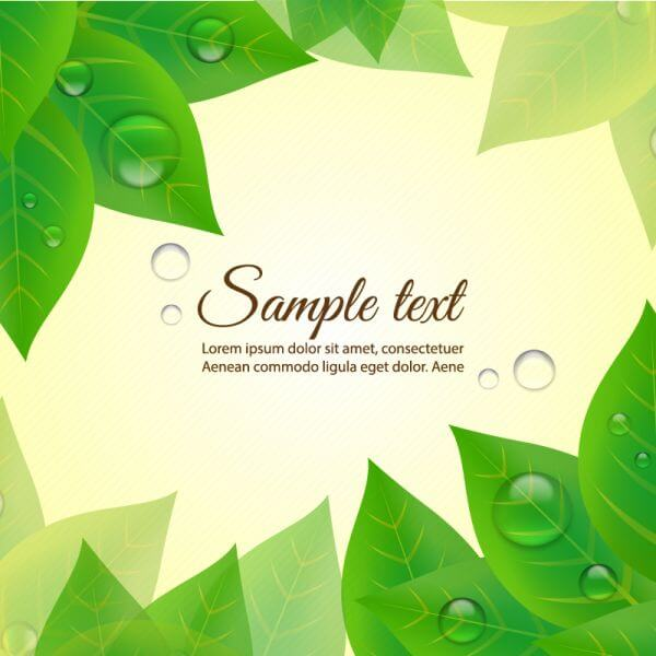 Summer background with leaves vector