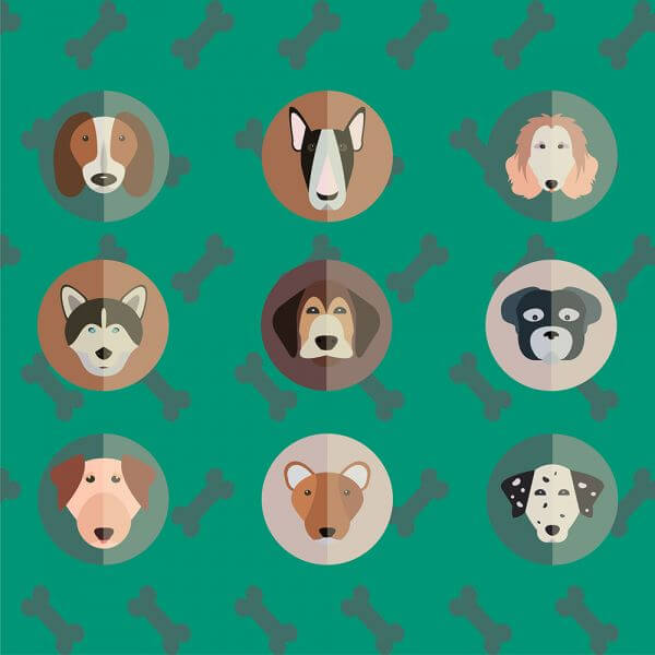 Vector illustration of cute dogs head set for free vector design vector