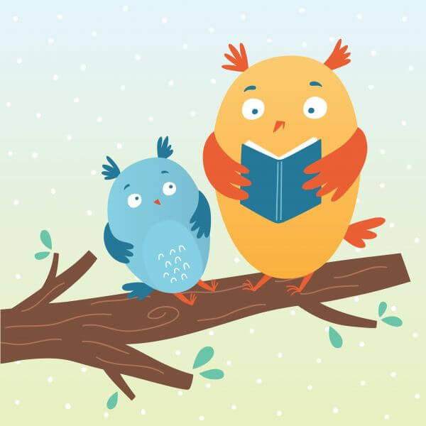 Vector illustration of cute owls reading a book vector