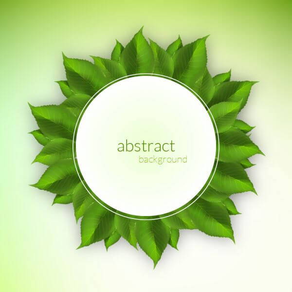 Fresh green leaves label vector