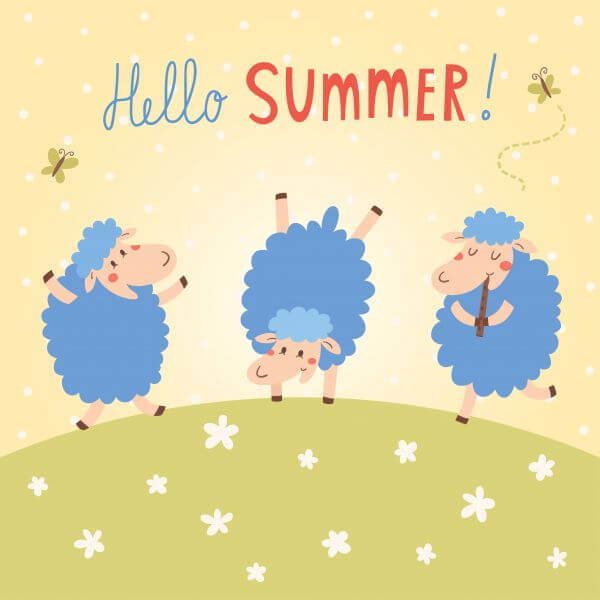 Hello Summer vector card with cute sheeps vector