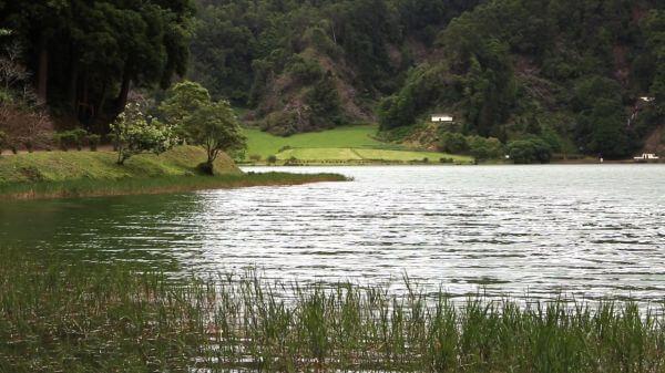 Walk Along The Lake video